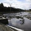 20101208-deerfoot-dam-3