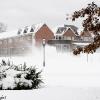 20101227-snow-storm-6