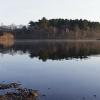 20120318-sudbury-reservoir-wraight-3