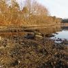 20120318-sudbury-reservoir-wraight-4