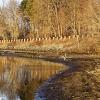 20120318-sudbury-reservoir-wraight-6