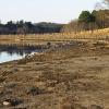 20120318-sudbury-reservoir-wraight-7