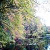 20120930-beals-preserve-fall-3