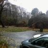20121029-clifford-erin