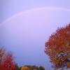 20141024_contributed_by_jennifer_cunningham_rainbow-800x600