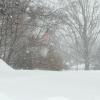 snowglobe_1