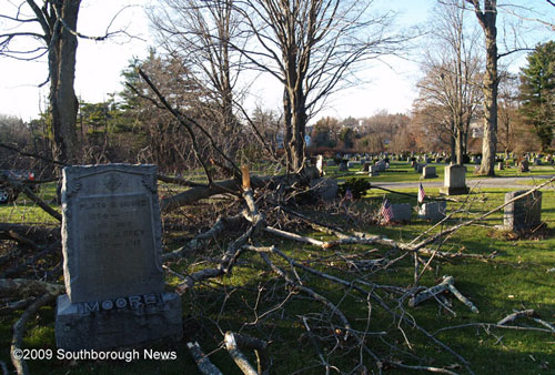 Post image for When a tree falls in the cemetery …