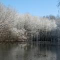 first-snow-7