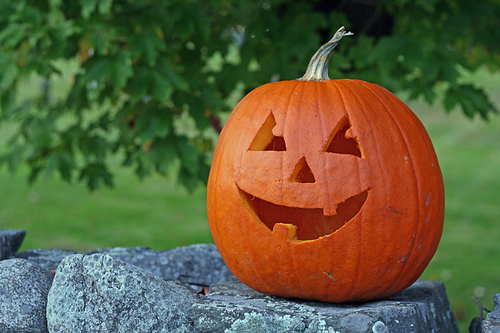 Post image for Heritage Day pumpkin viewing to end early due to mosquito threat