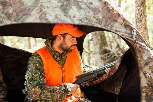 Post image for Deer hunting season in swing: use extra caution in wooded areas