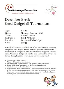 2014 winter_break_dodgeball_flyer