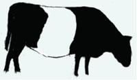 20150410_BHCF_logo