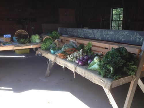 Post image for Southborough's Farmstand open 3 days/week