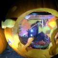 2015 pumpkin display - fish bowl (photo by Beth Melo)