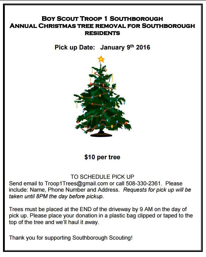 Christmas Tree Pickup January 9th