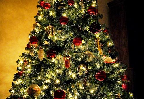 Post image for Christmas Tree pickup – January 9th