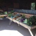 Southborough welcomed a fresh farm stand at Chestnut Hill Farm. (Contributed photo)