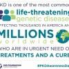 pkd foundation awareness day on Facebook