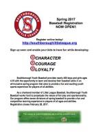 little league flyer