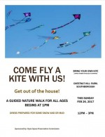 fly a kite flyer