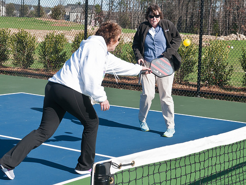 Post image for Seniors – learn to play pickle ball this fall
