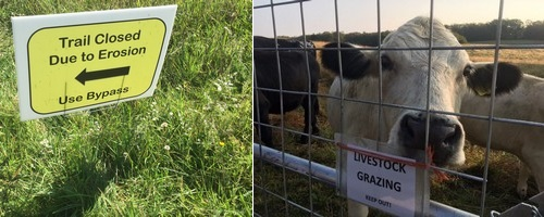 Post image for Walk this way: Trail changes, fences, and signs at Chestnut Hill Farm and Breakneck Hill