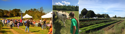 "Post image for Chestnut Hill Farm expanding by 39 acres thanks to generous family (and donors); creating ""New Community Gathering Space"" (Updated)"