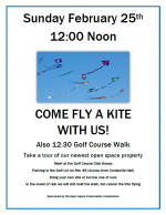 Kite flying at the golf course flyer