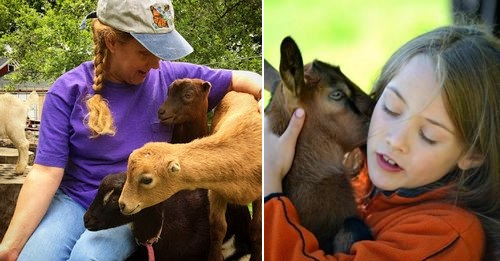 Post image for Cuddle baby goats and Meet the Farmer – Saturday