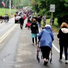 Following the Parade (by Allan Bezanson)