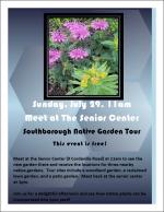 Southborough Native Garden Tour