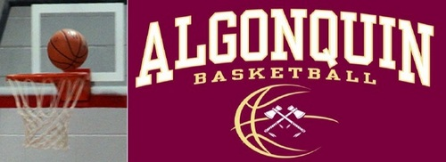 Post image for Basketball Clinic for K-8 over February break at Algonquin