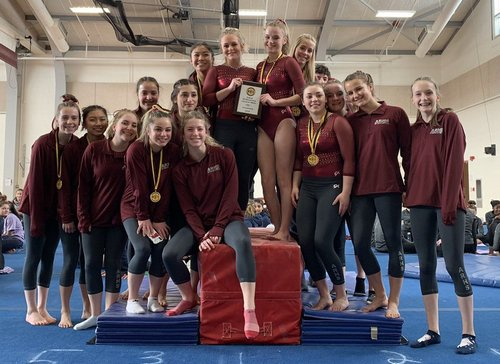 Post image for This week in sports: Mid-Wach League Champ Gymnasts; T-Hawks headed to States include wrestlers, runners, and swimmers (Update)