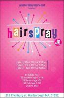 Hairspray, Jr flyer