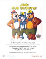 Cub Scout night flyer