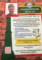 A Dog for JayJay flyer