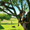 Biergarten at Chestnut Hill Farm (from Facebook)
