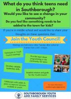 Youth Council Recruitment flyer
