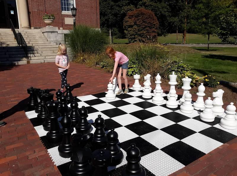 Chess piece college essay
