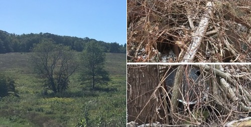 Post image for State instructs Town it must justify exemptions to OML for records about Town-owned farm dump