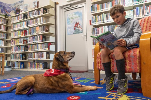 Post image for Read with Furry Friends on Saturdays starting this weekend