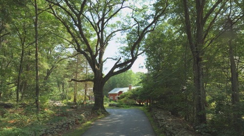 Post image for Selectmen promise to help frustrated residents raising concerns about tree removals and runoff