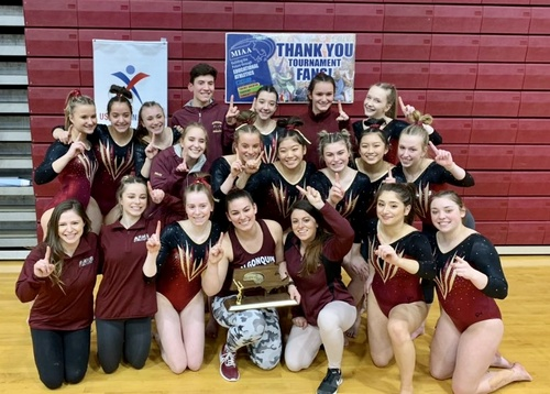 Post image for ARHS Post-season: Cheer on Gymnasts vying for state title and Girls Hockey entering playoffs <em>(Boys Hockey and Basketball out)</em>