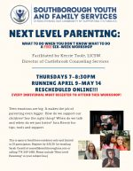 Next level parenting online workshops