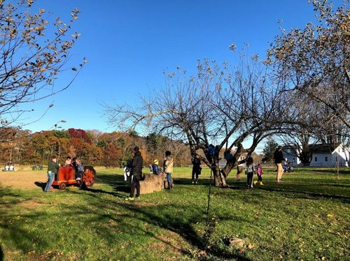 Post image for Chestnut Hill offering Fall Fun at the Farm each Sunday (Updated)