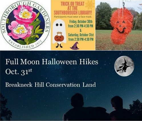 Post image for Events this week: Floral Workshop, Pre-K Yoga & Art, Trick or Treat at Library, & more Halloween fun