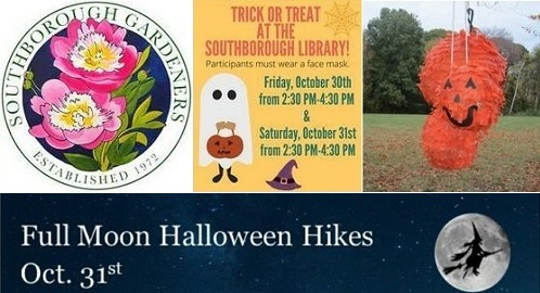 Photo of Events this week: Floral Workshop, Pre-K Yoga & Art, Trick or Treat at Library, & more Halloween fun