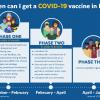 Mass vaccine phases