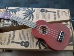 Southboough Library circulating ukuleles funded by SEF