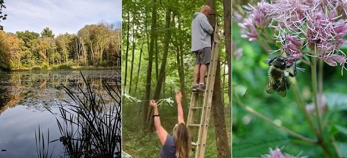 Post image for Outdoor fun: Guided hikes, Art Installations, and Beecology Garden Tour